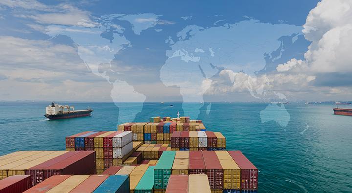 Long Sơn tự hào là đơn vị lớn mạnh trong lĩnh vực xuất nhập khẩu