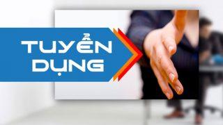 Công ty Xi măng Long Sơn – Tuyển dụng Nhân Viên Kinh Doanh khu vực Miền Bắc.