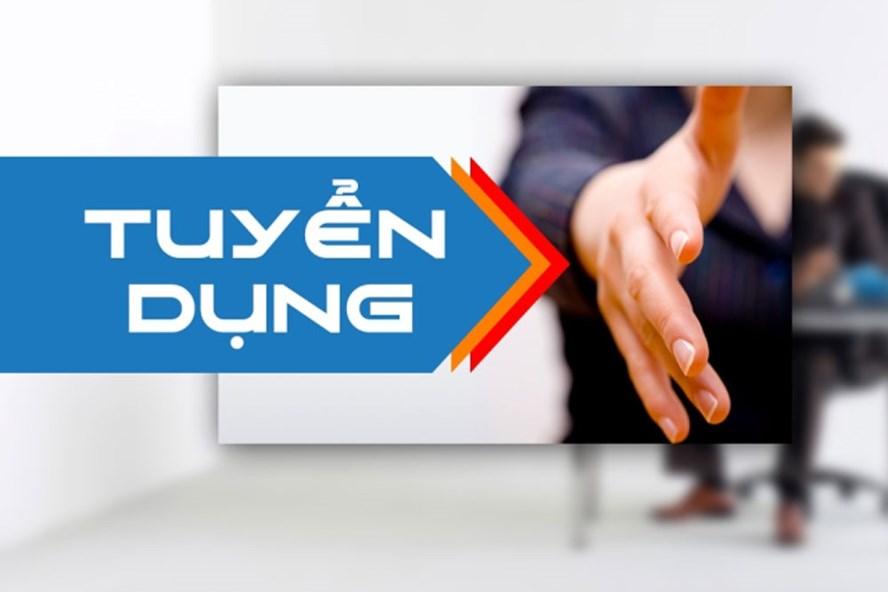 Công ty Xi măng Long Sơn – Thông báo tuyển dụng vị trí Nhân viên xuất nhập khẩu.