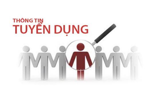 Công ty Xi măng Long Sơn – Tuyển dụng Nhân viên kế toán.