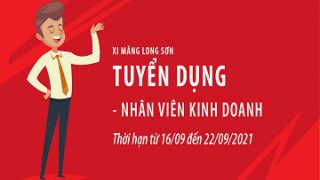 Công ty Xi măng Long Sơn – Thông báo tuyển dụng Nhân viên Kinh doanh